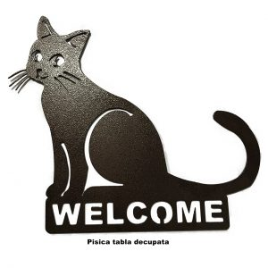 Welcome PISICA